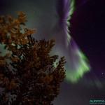 Aurores boreales du 17 mars 2015, nord de la Finlande - 19mm - 1.6s - f/4 - 6400 ISO