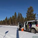 Forêt de Kiruna