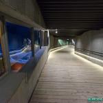 Cap Nord - En marche pour les salles souterraines