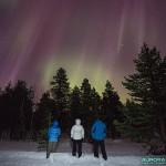 Aurore boréale au dessus de la forêt finlandaise