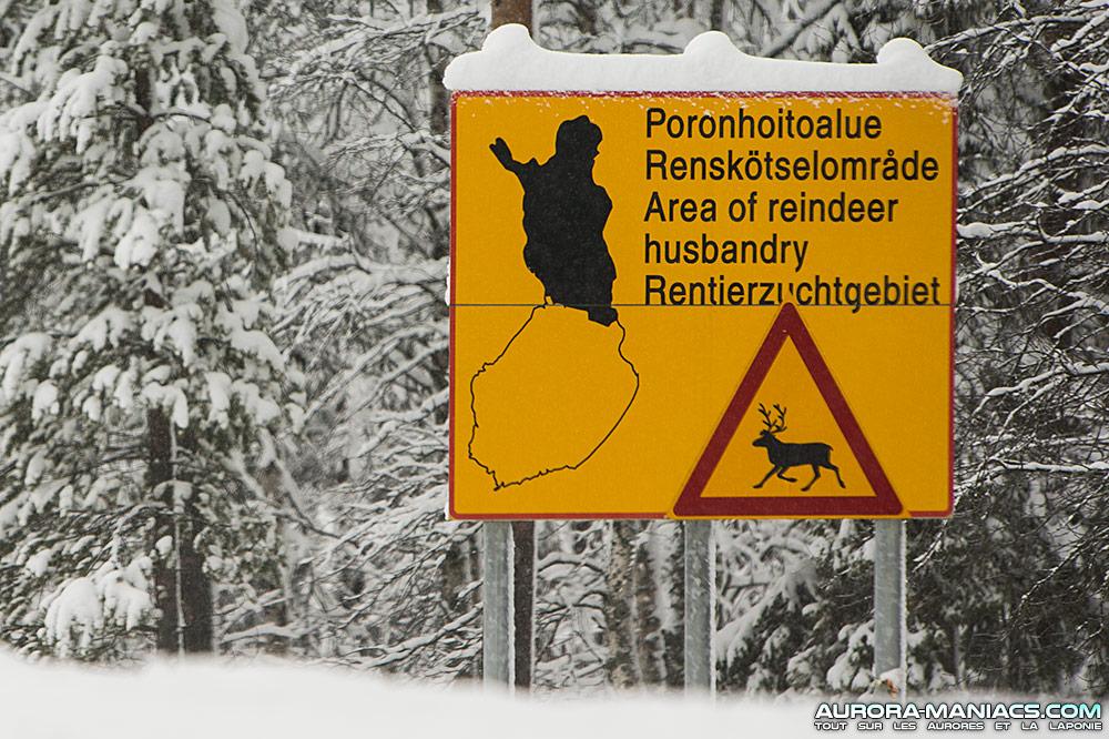 Le combat des Samis contre le changement climatique