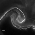 Aurores au dessus de l'antarctique - 15 juillet 2012 © NASA Earth Observatory