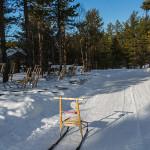 Balade en luge à Hetta, Enontekio (Finlande)