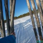 Balade à Hetta, Enontekio (Finlande)