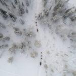 Séjour Aurores Boréales en Laponie