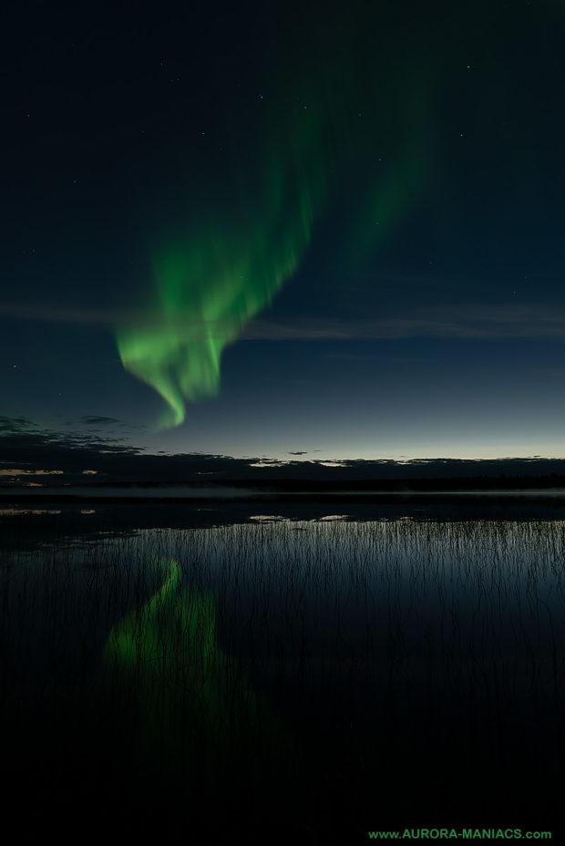 Les aurores boréales sont de nouveau visibles